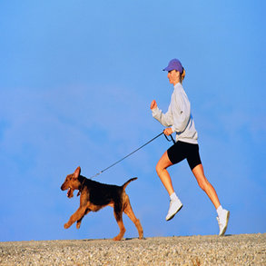 Dogs Decrease Risk of Heart Disease in Humans